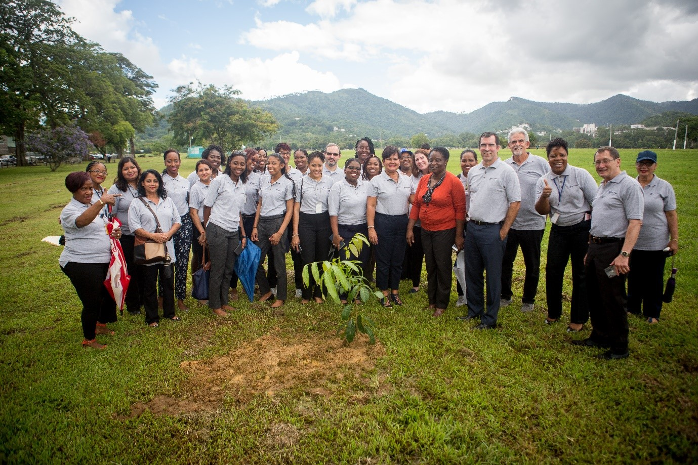 Staff at Tree Planting